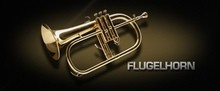 VSL Flugelhorn