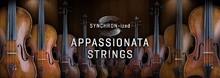 VSL Synchron-ized Appassionata Strings