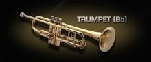 VSL Trumpet (Bb)