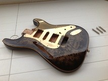 Warmoth Stratocaster Body