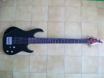 Washburn MB5