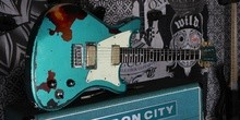 Wild Customs WILDMASTER TEAL GREEN RELIC OVER SUNBURST
