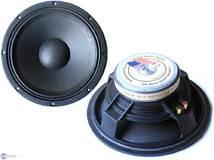 """Xxl Power Sound Woofer 12""""/30cm 450W PAW-305"""