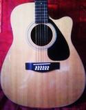 Yamaha FGX412C-12