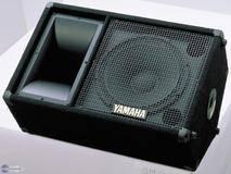 Yamaha SM12V
