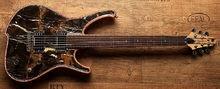 Zerberus Guitars Nemesis