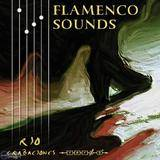 Zero-G Flamenco Sounds