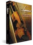 Zero-G Luminoso - Live Violin Phrases