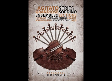8dio Agitato Sordino Strings