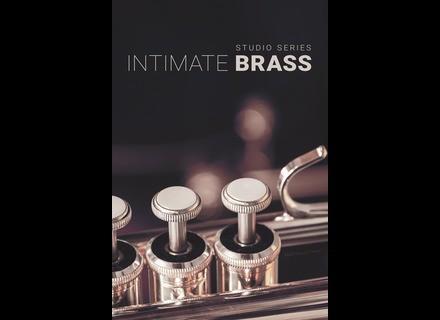 8dio Intimate Studio Brass
