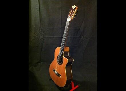 Alhambra Guitars Cross-Over