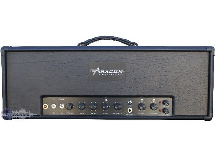 Aracom Amplifiers Evolver 45 Head