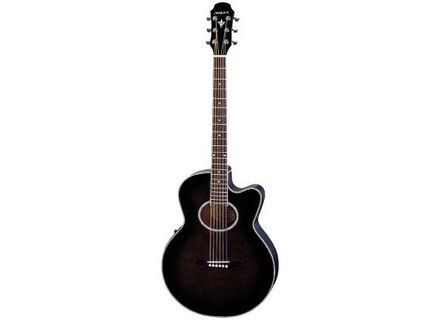 Aria Electric/Acoustic
