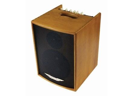 Ashdown Acoustic 100