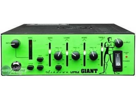 Ashdown Little Giant 350