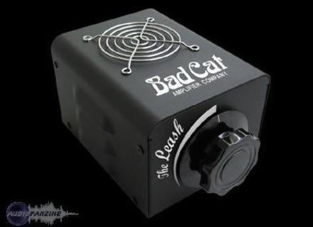 Bad Cat The Leash