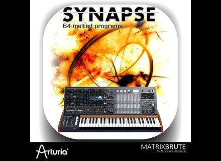 Barb and Co Synapse MatrixBrute