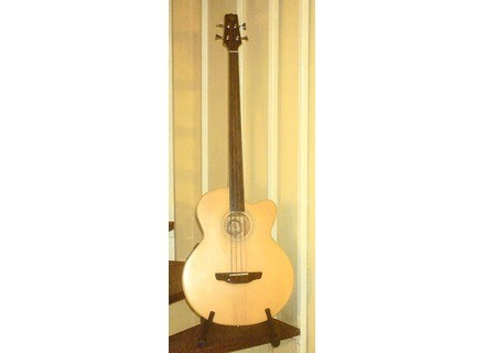 Bee & Billy fretless BB810C/BG