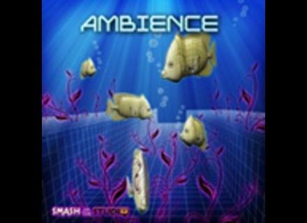 Big Fish Audio Ambience