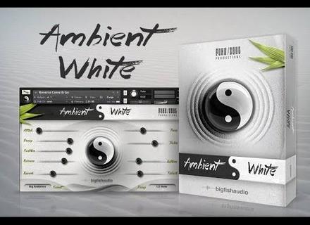 Big Fish Audio Ambient White
