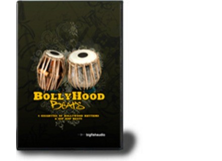 Big Fish Audio Bollyhood Beats