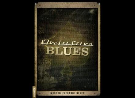 Big Fish Audio Electri-Fried Blues