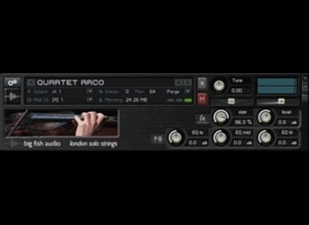 Big Fish Audio London Solo Strings