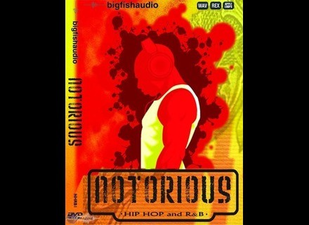 Big Fish Audio Notorious : Hip Hop and R&B