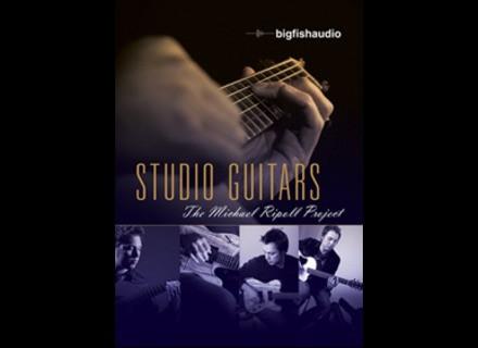 Big Fish Audio Studio Guitars: The Michael Ripoll Project