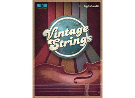 Big Fish Audio Vintage Strings