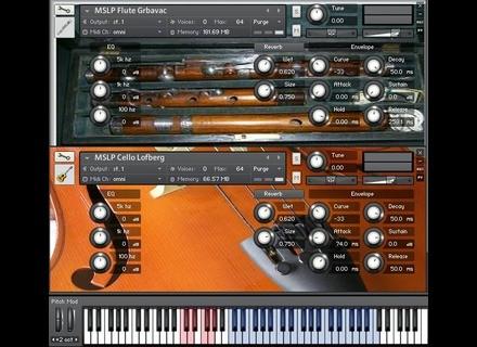 BIGcat Instruments MSLP Flute Grbavac