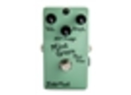 BJFe / BearFoot Mint Green