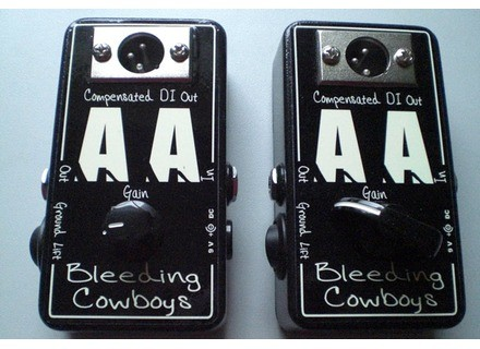 Bleeding Cowboys Anonymous Amp