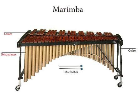 Concorde Marimba