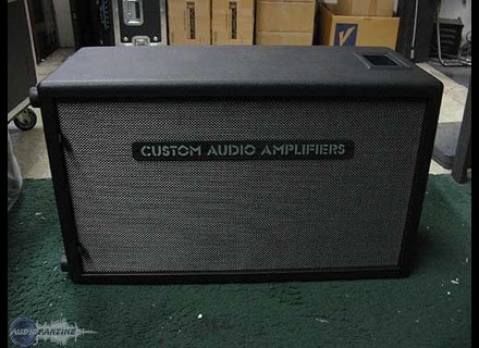 Custom Audio Electronics 2X12