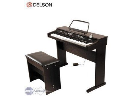 Delson NP 10