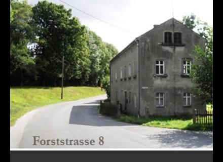 Detunized DTS012 — Forststrasse 8 Ableton Live Pack