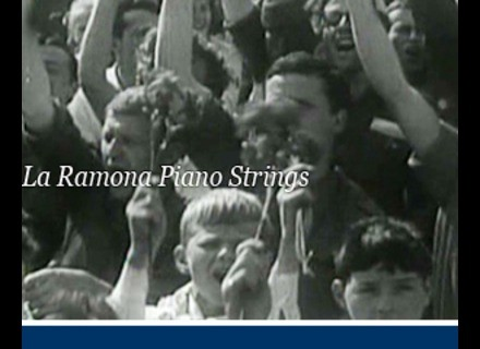 Detunized DTS028 - La Ramona Piano Strings