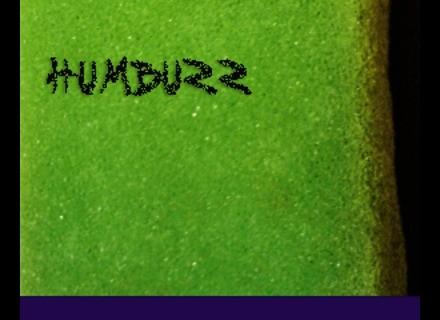 Detunized DTS049/DTG049 - HumBuzz