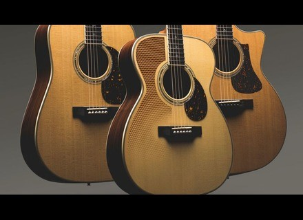 Eastman DT30 Dreadnought Double Top