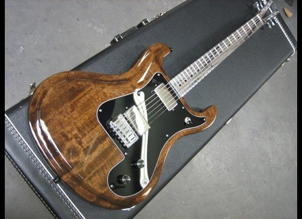 Electrical Guitar Company Series Two