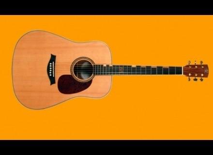 Elypse Guitars Solstice