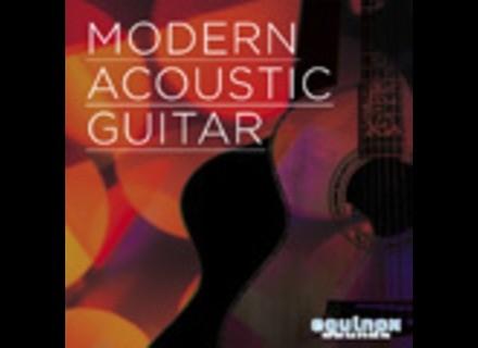 Equinox Sounds Modern Acoustic Guitar