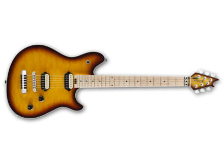 EVH Wolfgang Special HT
