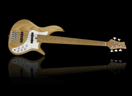 F Bass VF5