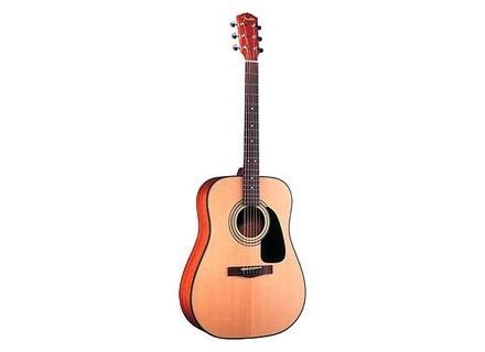 Fender DG-10