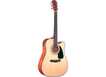 Fender DG-10CE