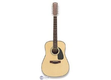 Fender DG