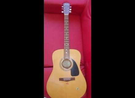 Fender DG-4