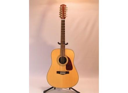 Fender DG-41S